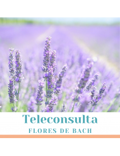 Teleconsulta de Flores de Bach